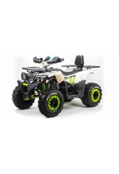 Квадроцикл 200 WILD TRACK LUX