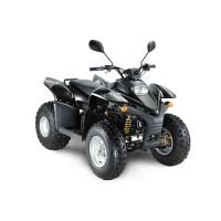 Квадроцикл STELS ATV 100RS